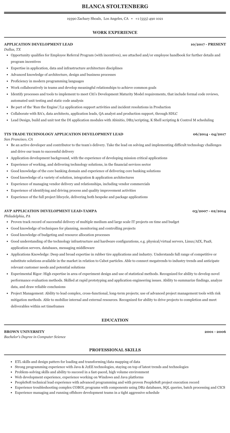 Application Development Lead Resume Sample | MintResume
