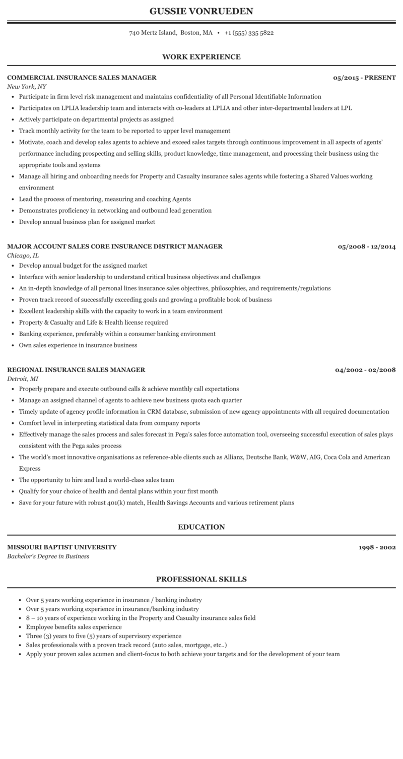 Sample resume for sales manager in insurance help with  popular reflective essay on civil war