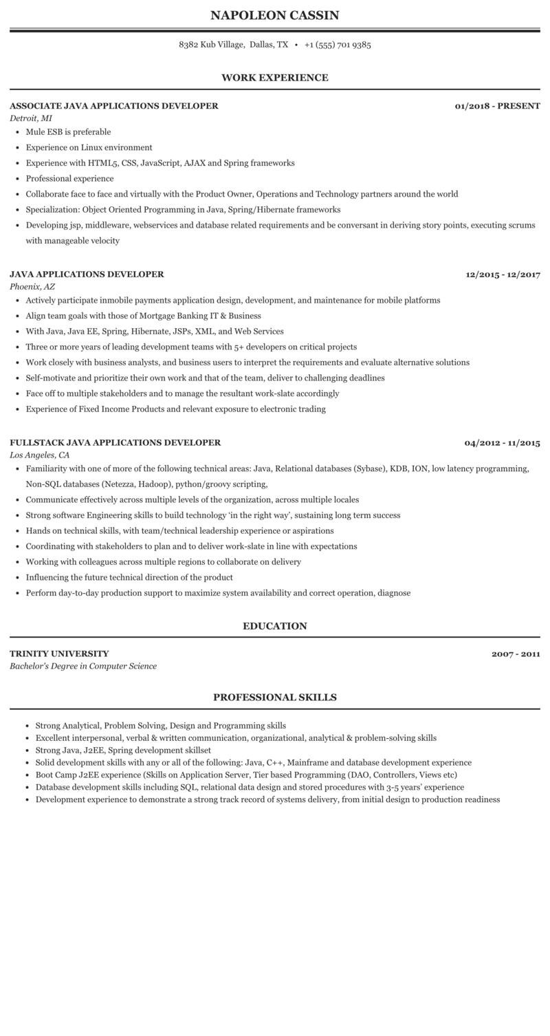 java gui rcp swing resume