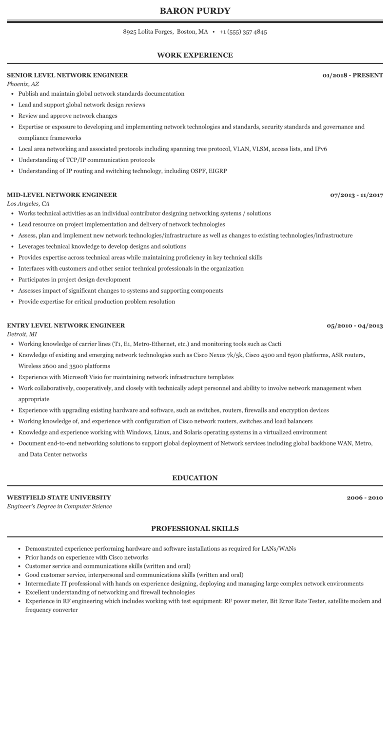 Extended networking style resume sea turtle research papers
