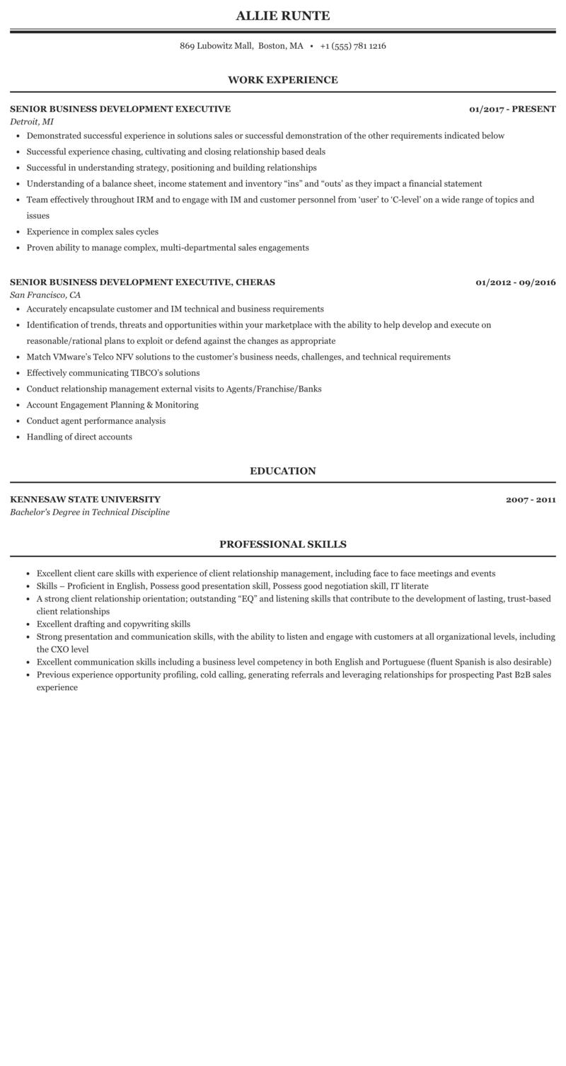 Senior Business Development Executive Resume Sample Mintresume
